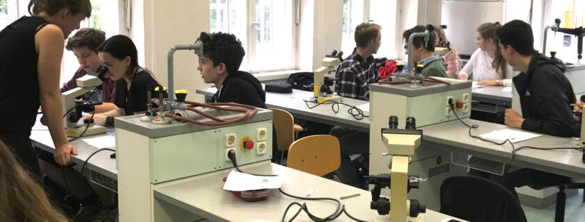 Am lebenden Objekt -Experimentierkurs an der Uni Potsdam