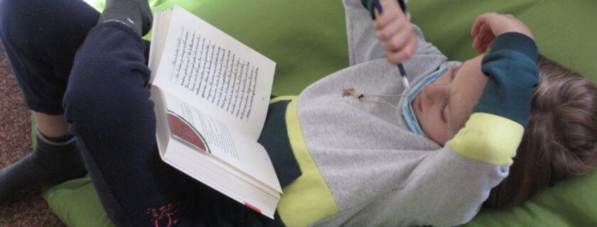 Lesen, lesen, lesen: Projektwoche 6L